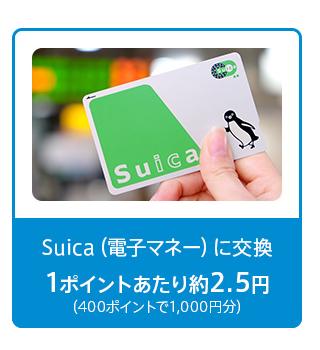 ビュー・スイカ・カード