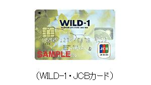 WILD-1・JCBカード